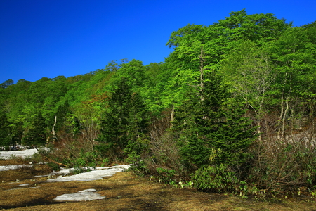 Scenery of OBA Valley Hachiman flat spring