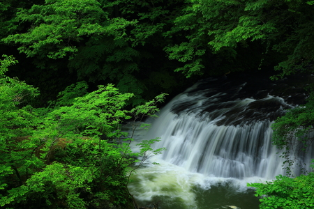 GE round stream of fresh green falls