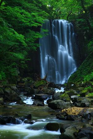 Kameda immobile waterfall in the summer