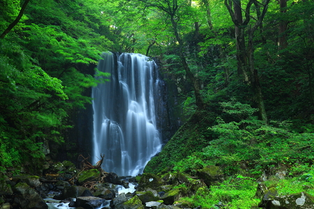 Kameda immobile waterfall in the summer