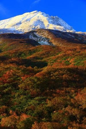 Autumn leaves Chokaiyama