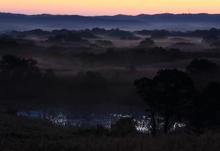 Dawn of a wetland Banque d'images
