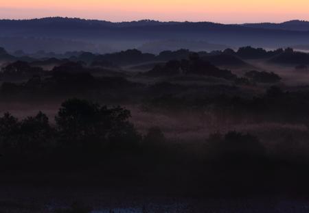 Dawn of a wetland Archivio Fotografico