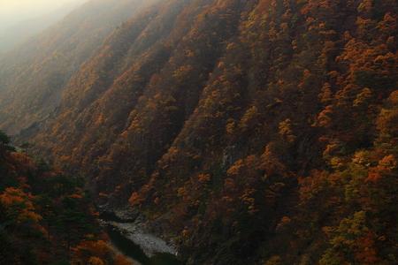 Autumn Lake in autumn