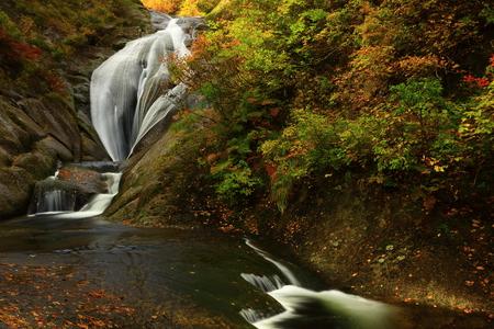 Peach Valley fall foliage Stok Fotoğraf