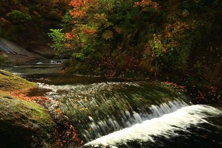 Autumn Valley Stok Fotoğraf - 113785982