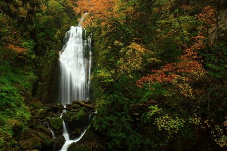 Dakigaeri Valley in autumn