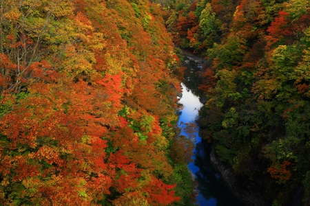 Oyasu Gorge in autumn