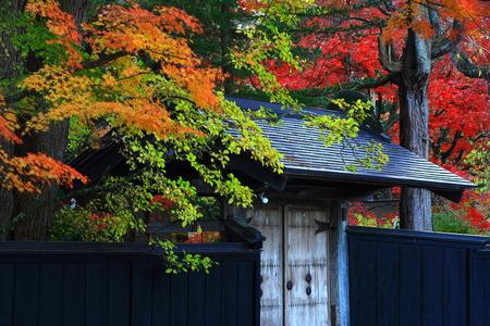 Autumn kakunodate Stock fotó