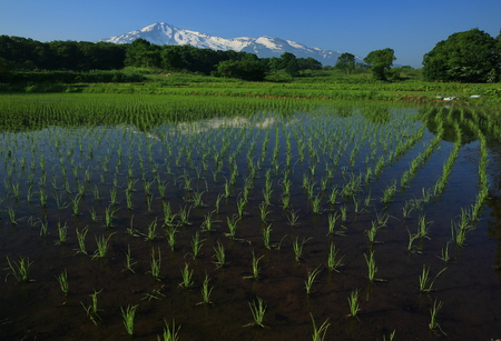 Chokai mountain and countryside