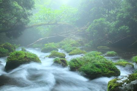 Akita Prefecture summer waterfall