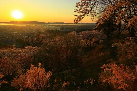 Funaoka Castle Park in spring. 写真素材 - 122454958