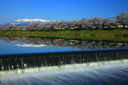Japan river in spring time
