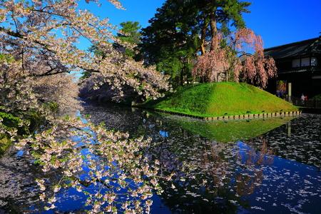 Aomori Prefecture Spring Hirosaki Park 写真素材 - 122456302
