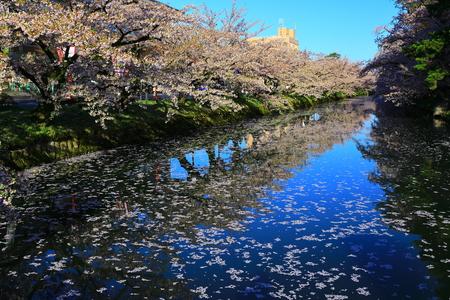 Aomori Prefecture Spring Hirosaki Park 写真素材 - 122456303