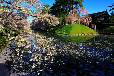 Aomori Prefecture Spring Hirosaki Park 写真素材 - 122456304