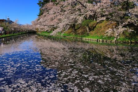 Aomori Prefecture Spring Hirosaki Park 写真素材 - 122456484