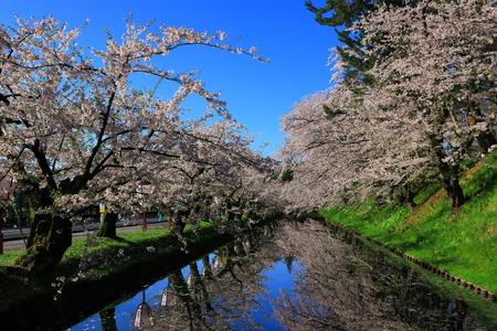 Aomori Prefecture Spring Hirosaki Park 写真素材 - 122456485