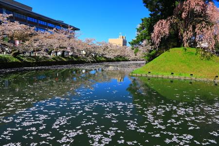 Aomori Prefecture Spring Hirosaki Park 写真素材 - 122456519