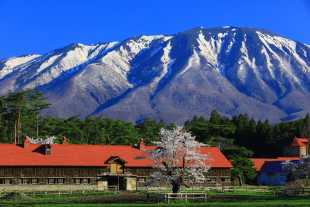 countryside of japan with snow mountain view