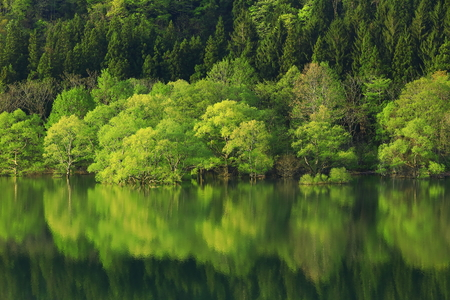 Fresh Greenery Lake view in Iwate Prefecture