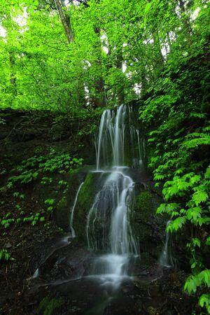 Cascada de verano
