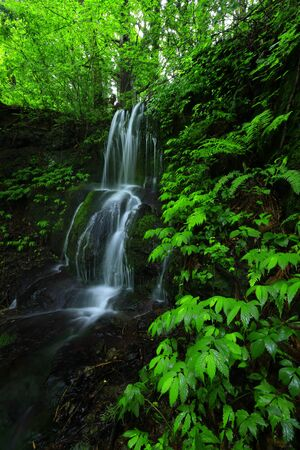 夏の滝 写真素材
