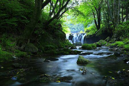 Summer mountain stream in Sumida-cho, Iwate Prefecture