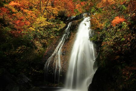 Wasserfall mit farbigen Blättern Standard-Bild