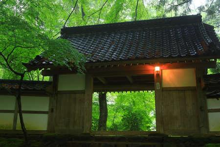 World Heritage Site: Fresh Green Chusonji Temple, Hiraizumi Town, Iwate Prefecture