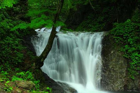 Summer Falls, Yahagi Town, Iwate Prefecture