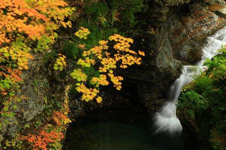 Akita Prefecture autumn Valley