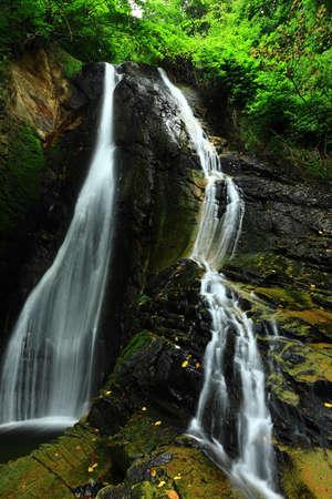 Summer Mountain Stream, Oxi County, Iwate Prefecture Zdjęcie Seryjne