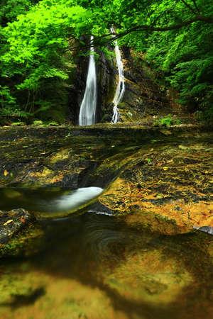 Summer Mountain Stream, Oxi County, Iwate Prefecture