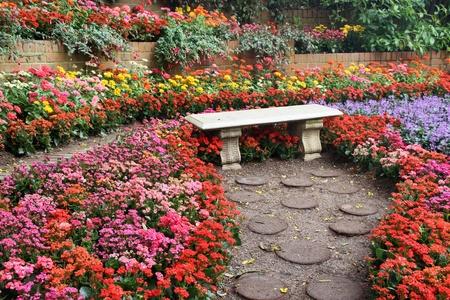 flower garden path: beautiful colourful flower garden