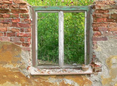 Old window and brick with jungle behind photo