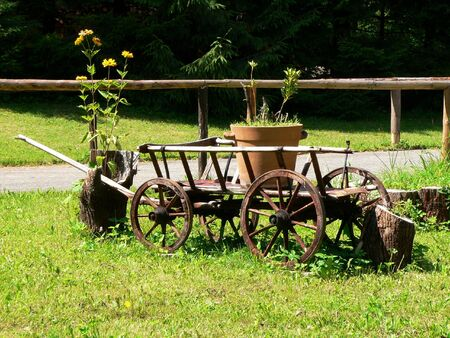 Old barrow with the flower boxe on green grass. Stock Photo - 4621822
