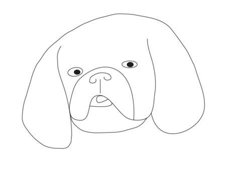 Handly draw face of dog - Shitzu. Stock Photo - 4624980