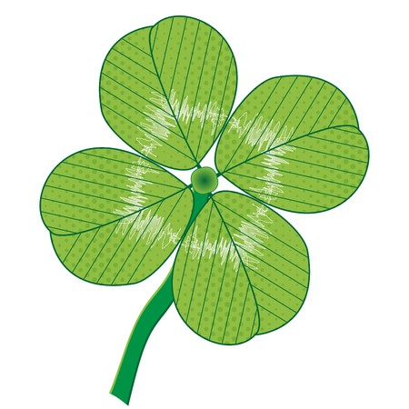 A luck four leaf  illustration isolated on white.