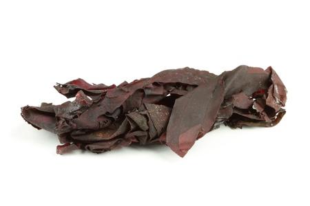Dried irish dulse seaweed isolated over white