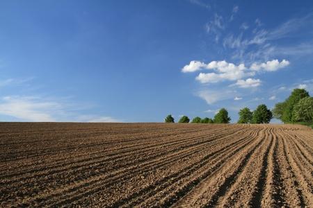 ploegen: Geploegd veld in het voorjaar de tijd met blauwe hemel
