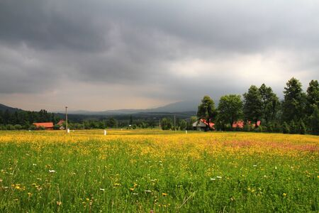 Storm clouds over the mountains and yellow field  photo