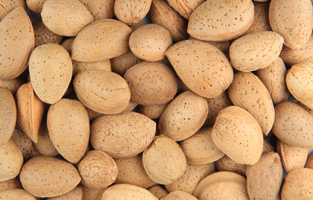 nutshells: Close up of almond nuts in nutshells.