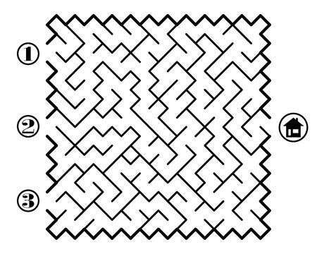 the maze: Encontrar camino a trav�s del laberinto de la casa. Tres entradas y s�lo un camino correcto. Ilustraci�n vectorial sobre fondo blanco.