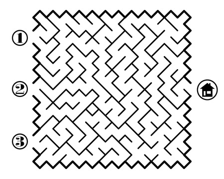 Find way across labyrinth to the home. Three entrances and only one correct path. Vector illustration on white background. Stock Illustratie