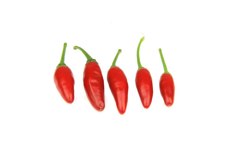 Five red chilli peppers on white background.