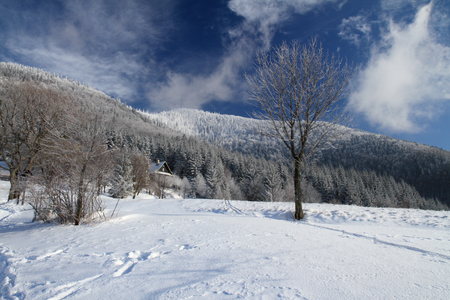 Majestic winter day in Beskydy mountains - Czech republic,with hill Lysa hora 1323 m.
