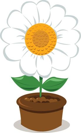 a vector cartoon representing a daisy in a pot