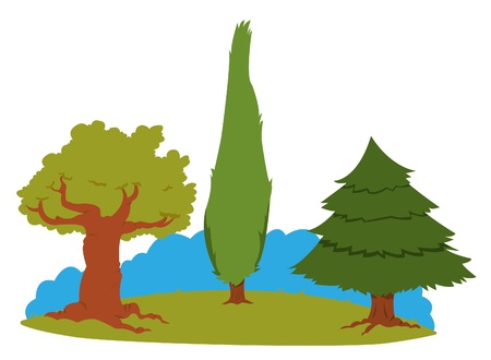 a group of different kind of trees Stock Vector - 15607107