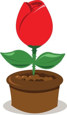 a vector cartoon representing a red rose in a pot
